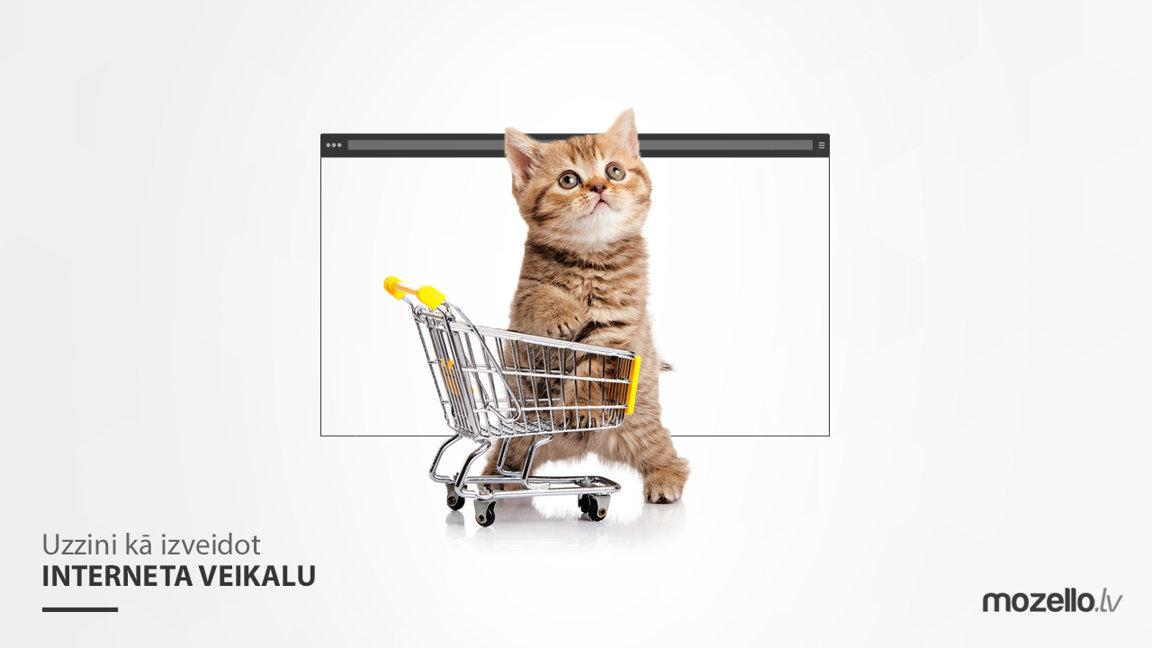 Kā izveidot pašam savu interneta veikalu?