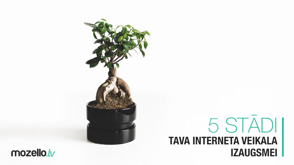 5 ieteikumi Tava interneta veikala izaugsmes veicināšanai